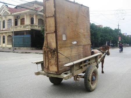 Những chuyến xe ngựa chở hàng như thế này là công cụ kiếm sống ngày Tết của nhiều phụ nữ
