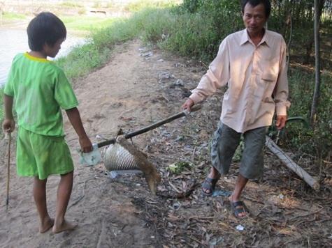Người dân vớt cá đi chôn