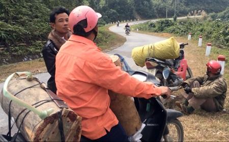 Những chiếc chang (tổ) được các thợ săn chở sau xe máy, chuẩn bị cho một cuộc săn ong