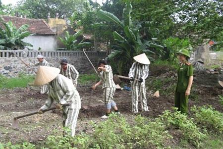 Nữ quản giáo Nguyễn Thị Kiều Anh hướng dẫn phạm nhân lao động.