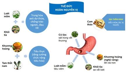 Thực phẩm chức năng Tuệ Đức Hoàn Nguyên Vị - giảm trào ngược, khỏe dạ dày