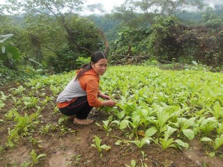 Chị Kring Búp bên vườn rau