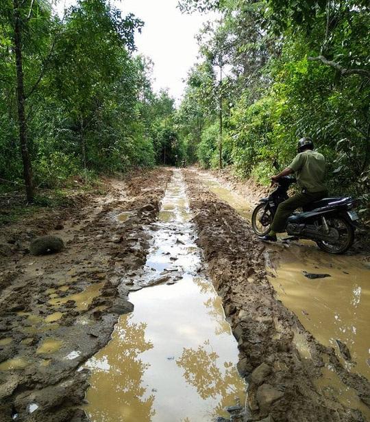 Địa bàn nơi anh Lộc mất tích rất hiểm trở, rừng rậm