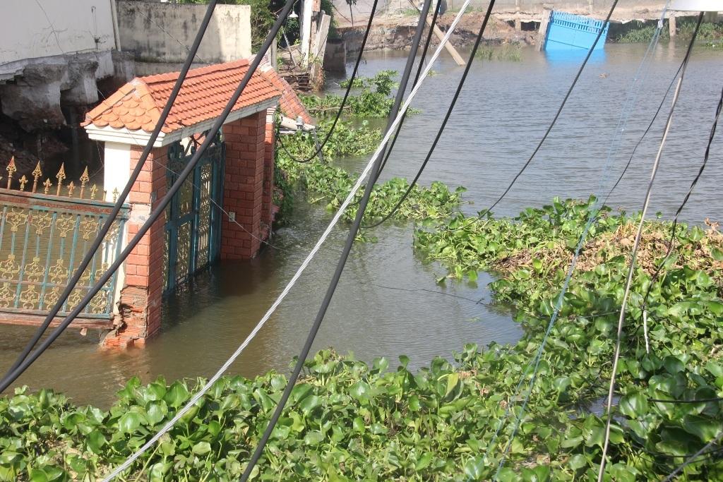 Khu đất rộng hơn 1.000 mét vuông bây giờ đã thành sông