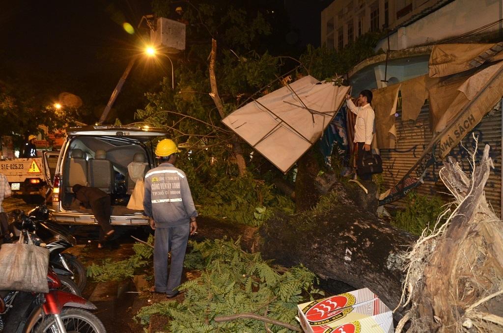 Ngoài ra, 2 xe máy và một mái hiên nhà dân bị cây đè trúng hư hỏng