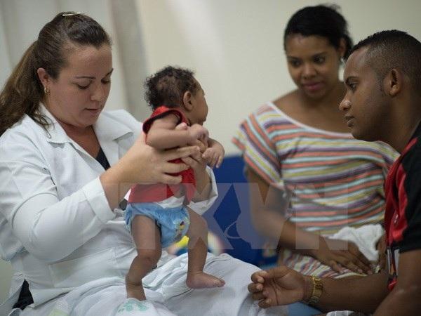 Chăm sóc em nhỏ 2 tháng tuổi mắc chứng đầu nhỏ do virus Zika tại Salvador, Brazil. (Nguồn: AFP/TTXVN)