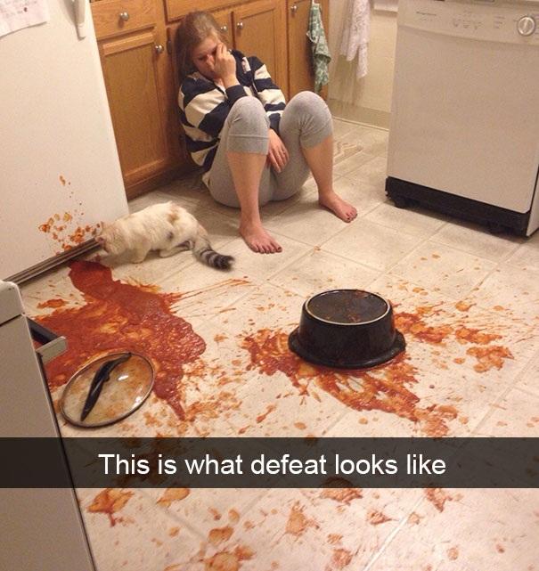 Nếu bạn chưa biết thế nào là ngày tồi tệ nhất thì hãy xem bức hình này.
