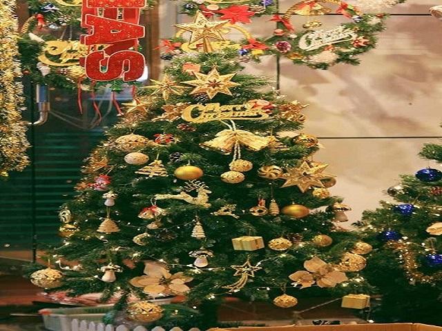 Nhiều cửa hàng còn bày bán cây thông trang trí sẵn