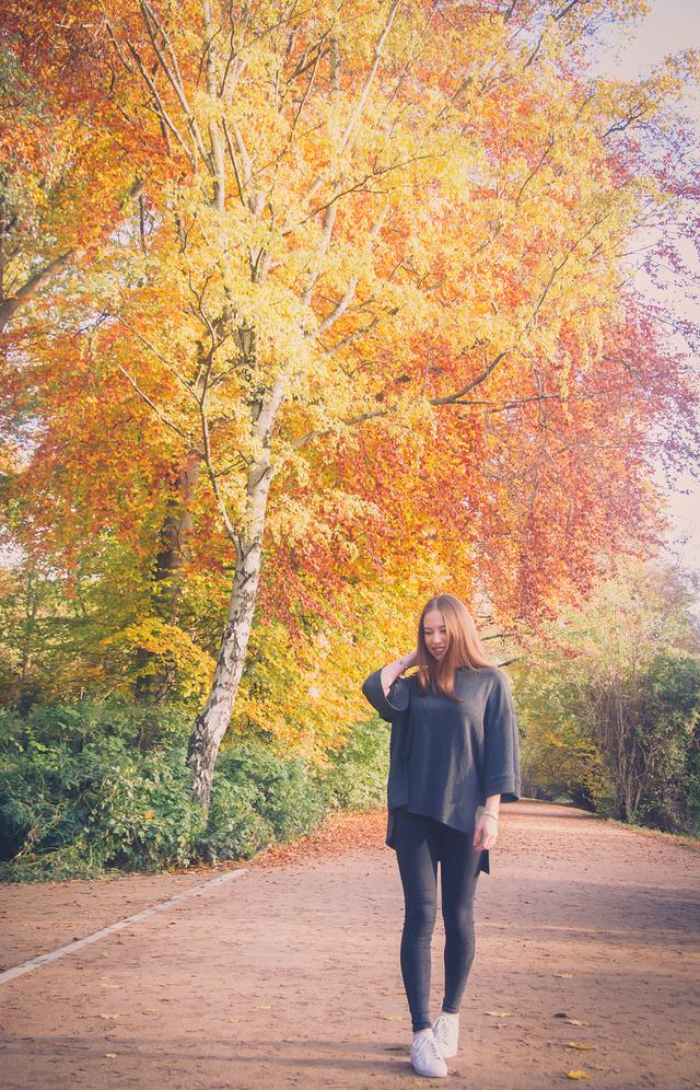 Những chiếc lá đổi màu từ xanh sang vàng và đỏ như một lời chào, lời nhắc mùa thu đã tới.