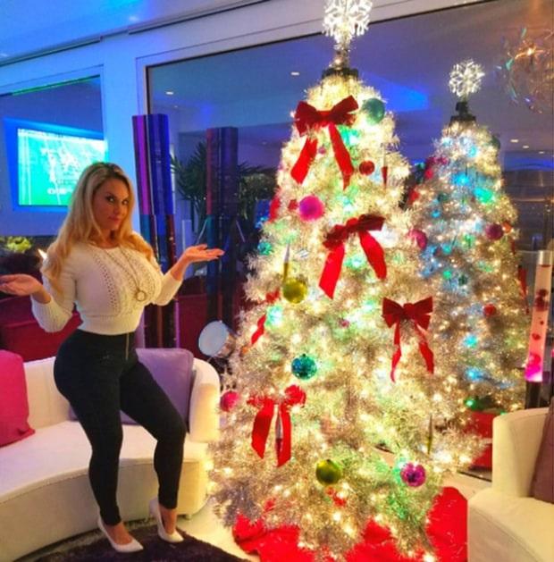 Người mẫu Coco Austin tự hào khoe thành quả của mình - cô tự trang trí cây thông Noel năm nay.