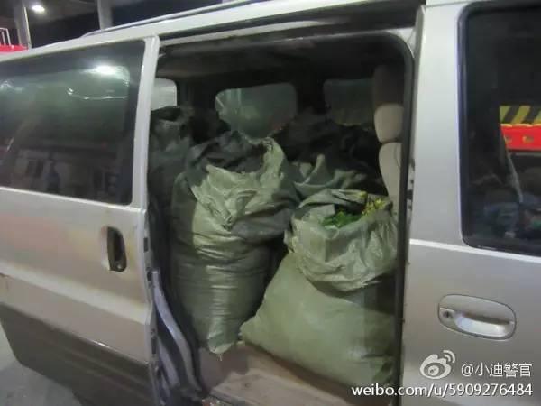 Chiếc xe ô tô được dùng để chở hoa hái trộm