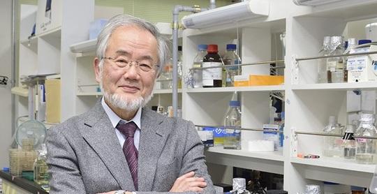 Tiến sĩ Yoshinori Ohsumi