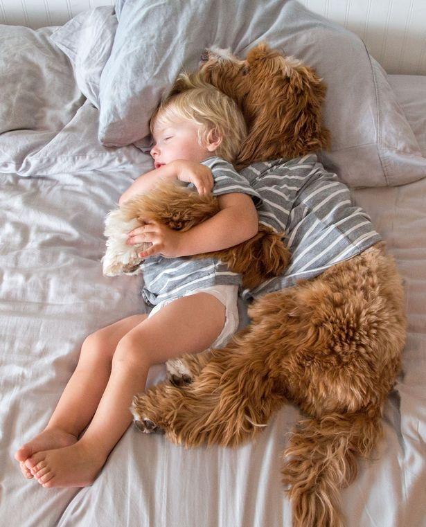 """Tình bạn dễ thương của bé và """"bạn bốn chân"""" gây nức lòng dân mạng - 5"""