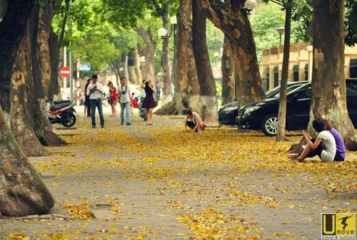 Mùa thu cảnh lá vàng rơi, cành khô lá úa... lòng người hay thương cảm, man mác buồn… dễ rơi vào trạng thái trầm cảm