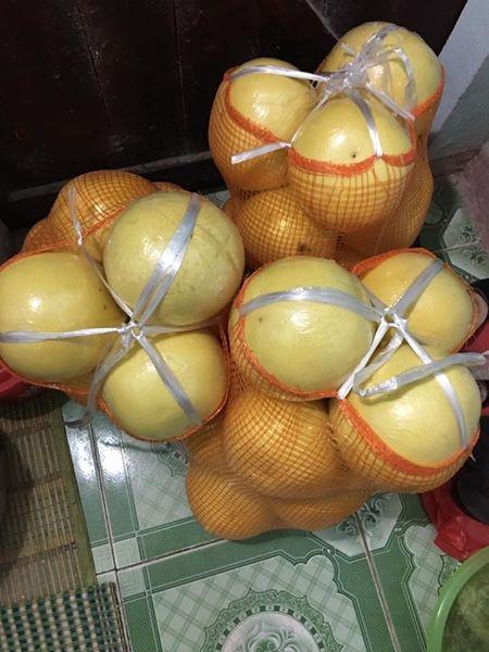 Trên thị trường hiện nay đang xuất hiện loại bưởi vỏ vàng óng khá lạ được bán với giá 25.000 đồng/quả