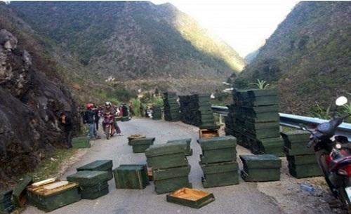 Các thùng ong của ông Lê Tiến Tuân bị đổ ra Quốc lộ 4C.  Ảnh T.L