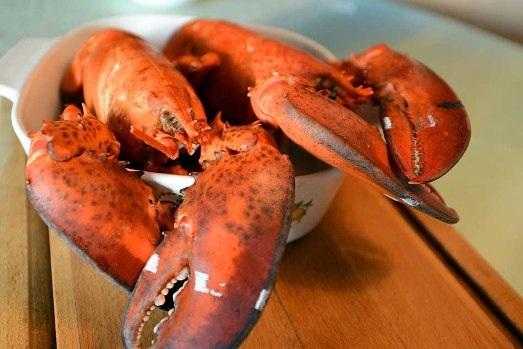 Những món hải sản chỉ dành cho giới nhà giàu - 1