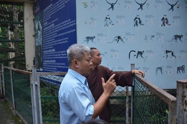 Đại diện Thảo Cầm Viên đưa sư thầy ra vườn thú thăm chim khổng tước, đồng thời hướng dẫn về địa phương làm bản tường trình, có xác nhận của địa phương về nguồn gốc chim quý