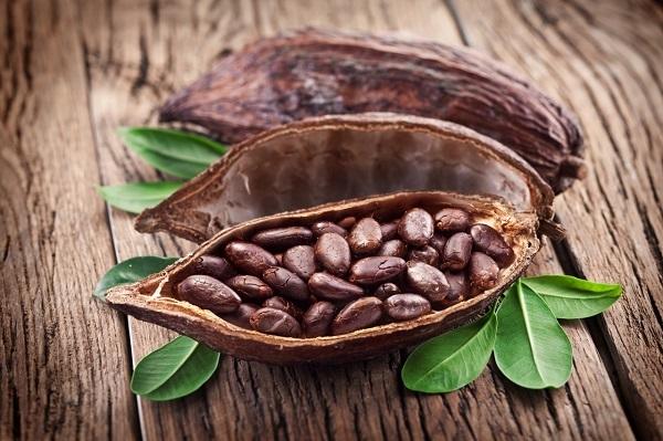 Hạt ca cao thiên nhiên là thành phần chính của sô cô la