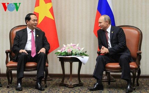 Chủ tịch nước Trần Đại Quang và Tổng thống Nga Vladimir Putin tại buổi tiếp.