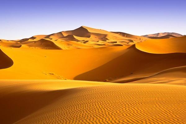 Sahara – một trong những nơi khô cằn nhất trên Trái đất hiện nay, đã từng là vùng đồng cỏ tươi tốt (Ảnh: Texas A& M)
