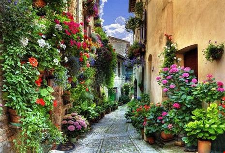 Ngất ngây với những ngôi nhà phủ hoa đầy lối đi - 11