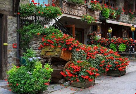 Ngất ngây với những ngôi nhà phủ hoa đầy lối đi - 12