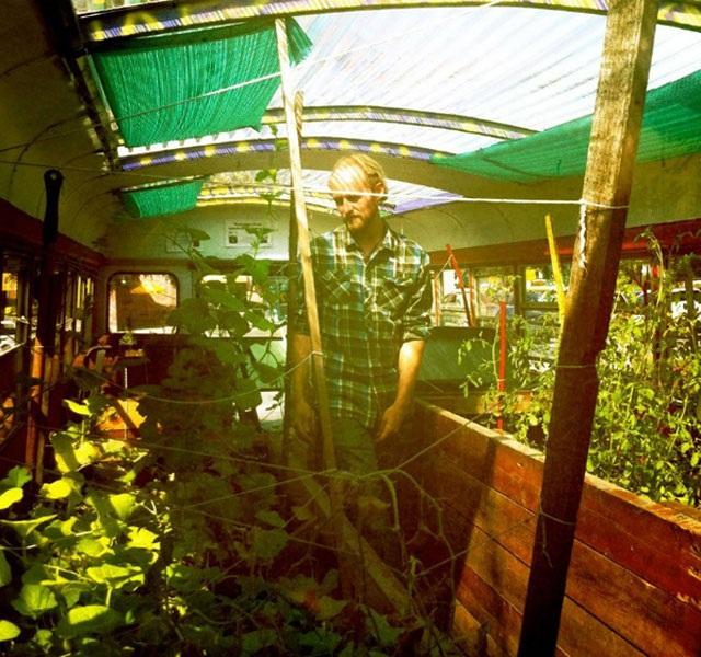 Lạ lùng trồng rau trong… xe buýt - 3