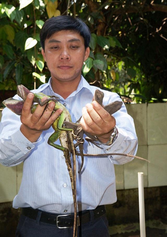 Anh Nguyễn Thanh Tuấn - Nông dân xuất sắc tỉnh Quảng Nam chia sẻ kinh nghiệm thuần phục nhông cát.
