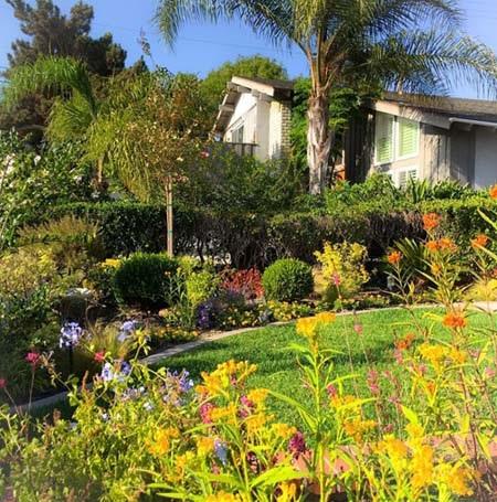 Khu vườn của MC Kỳ Duyên tuyệt đẹp với đủ màu sắc các loài hoa
