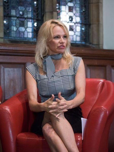 Pamela Anderson bức xúc trước thực trạng phim khiêu dâm…