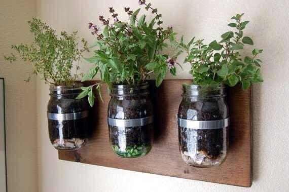 Vườn rau sạch trong ống bơ, chai lọ, lốp xe... đẹp hiếm thấy - 6