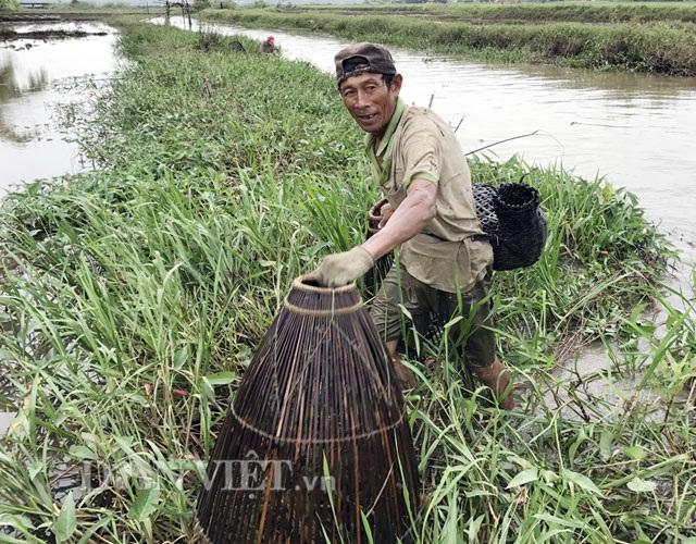 Chụp nơm - hình thức bắt cá vốn rất phổ biến của người dân vùng quê Quảng Ngãi ở nhiều thập niên trước