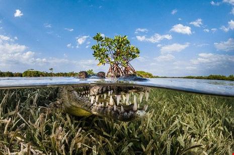 Việt Nam lọt top ảnh đẹp du lịch thế giới - 7