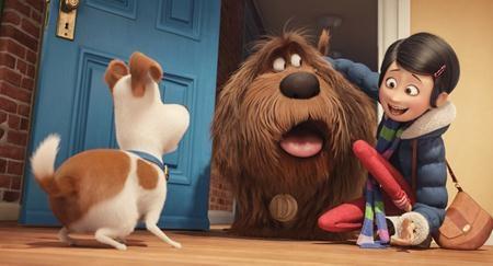 """Nội dung cảm động gửi gắm những bài học ý nghĩa đã giúp bộ phim hoạt hình """"The secret life of pets"""" thu về tới 875.4 triệu đô la Mỹ doanh thu phòng vé toàn cầu."""