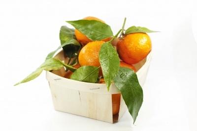 Không bệnh cũng nên ăn trái cây có chỉ số đường huyết thấp - 3