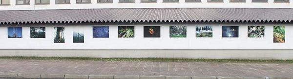 """Thời khắc giao mùa tại hòn đảo """"châu Âu trong lòng nước Nhật"""" - 15"""