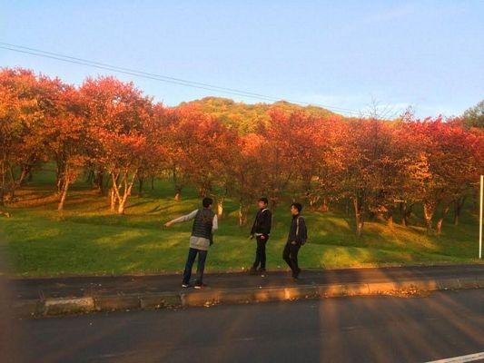 Đón mùa Đông đến sớm ở Hokkaido - 2