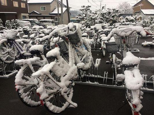 Đón mùa Đông đến sớm ở Hokkaido - 10
