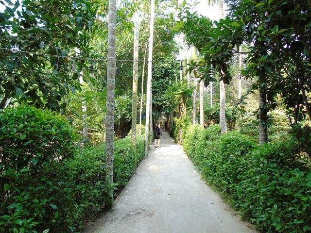 Lối vào Homestay của lão nông Trần Văn Liền, ấp Nhơn Lộc, thị trấn Phong Điền Cần Thơ.