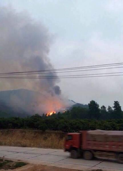 Bắc Giang: Hơn 50 ha rừng bị đốt phá, công ty lâm nghiệp bị phê bình! - 1