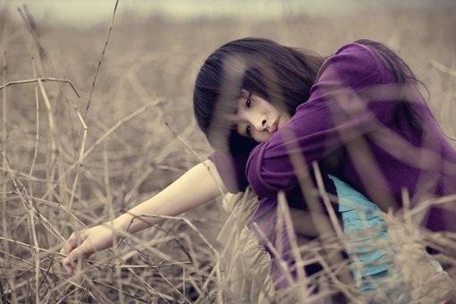 Em sẽ kiên cường như bồ công anh trong gió, khó khăn vẫn mạnh mẽ bước tiếp