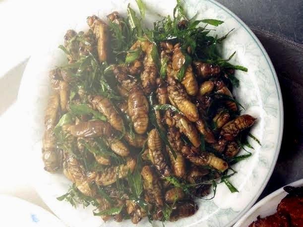 Ve sầu khi chế biến thành món ăn có vị bùi béo thơm đặc trưng