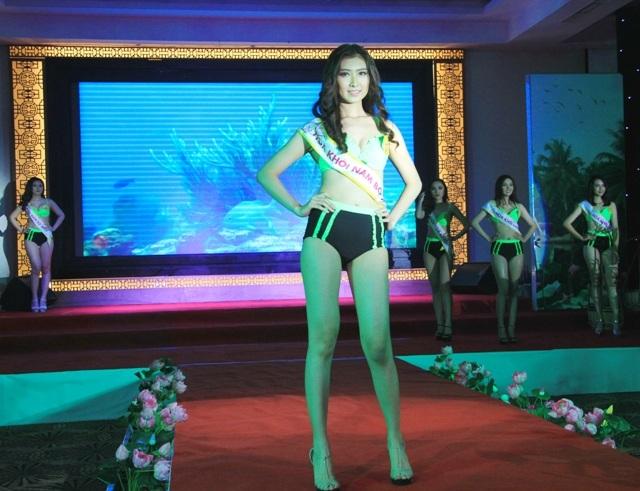 30 người đẹp vào chung kết Hoa khôi Nam Bộ 2017 - 3