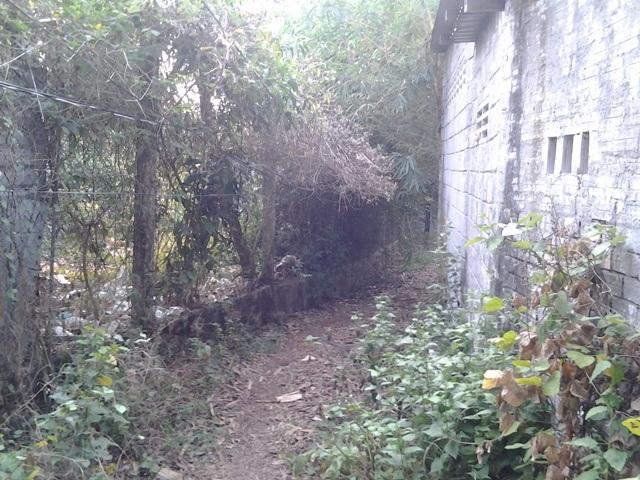 ... và hiện trạng các công trình lấn chiếm vào ngày 7/3/2017 cho thấy vẫn không thay đổi gì. Chỉ có khác là cây cỏ mọc um tùm, tường cũ kỹ hơn khi không nhúc nhích trong 1 năm qua.