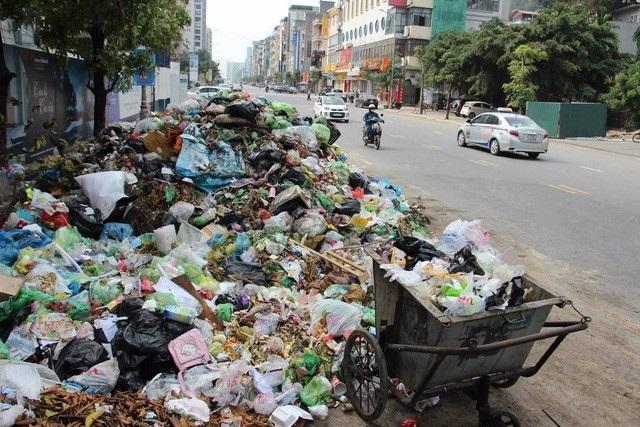 Hạ Long từng ngập ngụa trong rác do thành phố không chi trả tiền theo giá đốt rác (ảnh CTV)