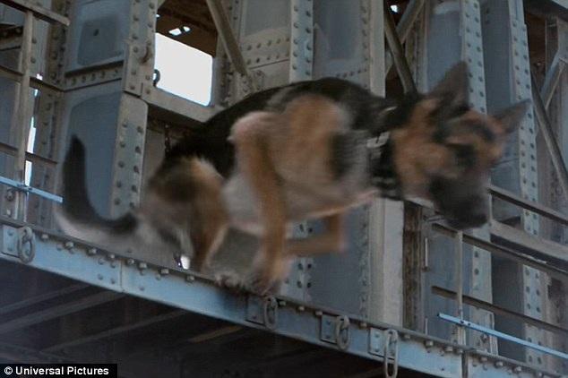Trong phim, chú chó đã chủ động nhảy xuống dòng sông từ một cây cầu. Nhưng trên phim trường, dù chỉ là nhảy xuống một bể bơi đang được tạo sóng, nhưng chú chó đã quá hoảng sợ đến mức chìm nghỉm ngay lập tức khi bị đẩy xuống nước.