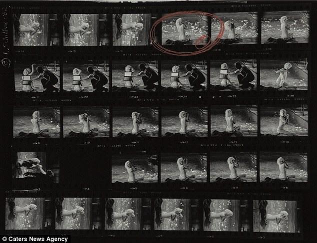 12 bức ảnh bao gồm phim gốc chụp Marilyn Monroe bên bể bơi được dự đoán sẽ đạt mức giá lên tới 35.000 USD.