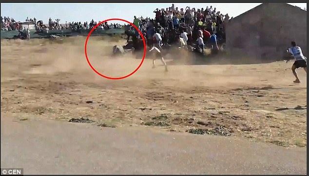 Khi tiếp cận được người đàn ông, nó đã đẩy ngã anh ta xuống nền đất trong tiếng la hét hốt hoảng của những người đứng xem. Vết thương chí tử ở vùng cổ mà con bò gây ra đối với người đàn ông đã khiến anh này không qua khỏi.