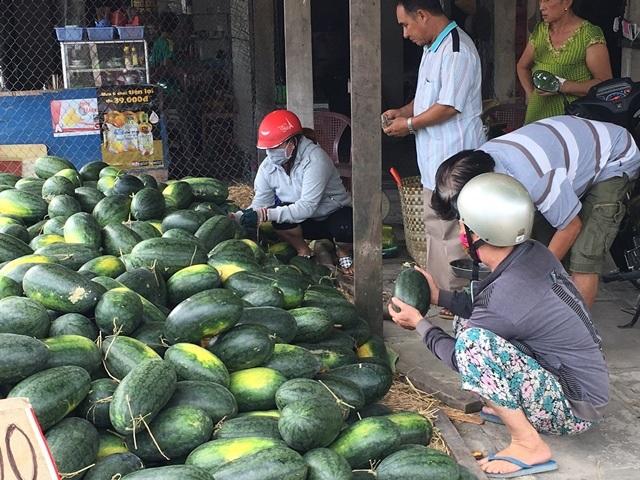 Nhiều người mua dưa hấu với giá rẻ